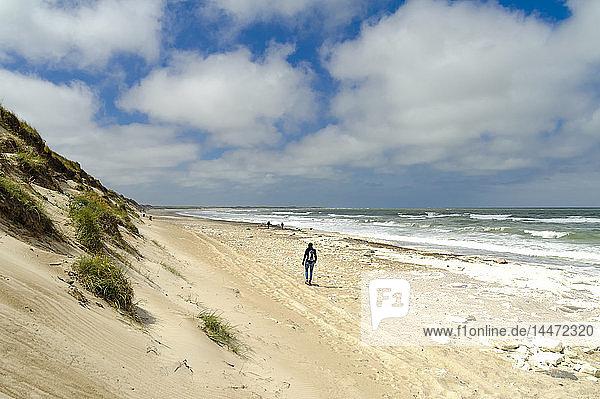 Dänemark  Jütland  Frau am Strand spazieren