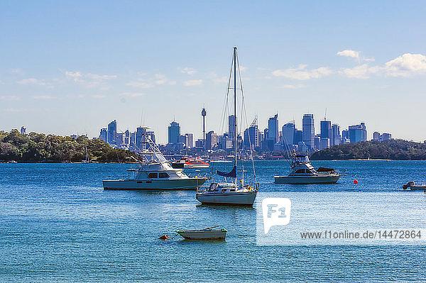 Australia  New South Wales  Sydney  Watson Bay