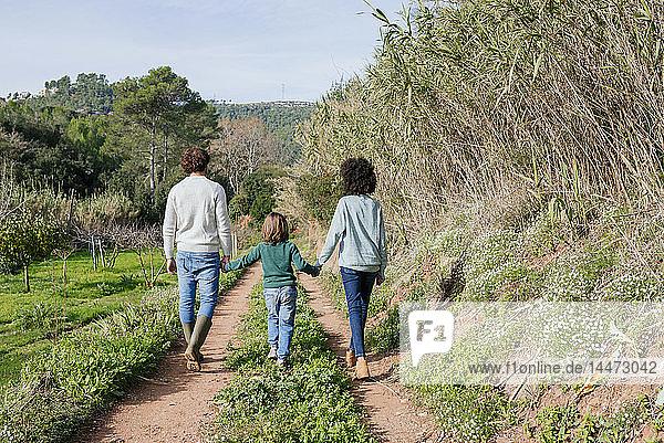 Glückliche Familie beim Spaziergang auf dem Land  Händchen haltend