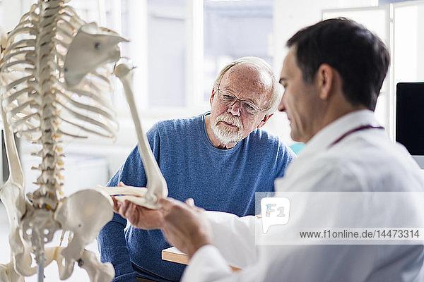 Arzt erklärt dem Patienten Knochen am anatomischen Modell in der medizinischen Praxis