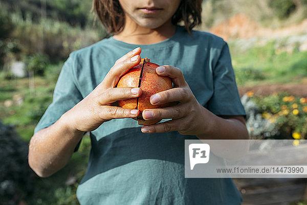 Junge hält halbierten Granatapfel in einem Obstgarten