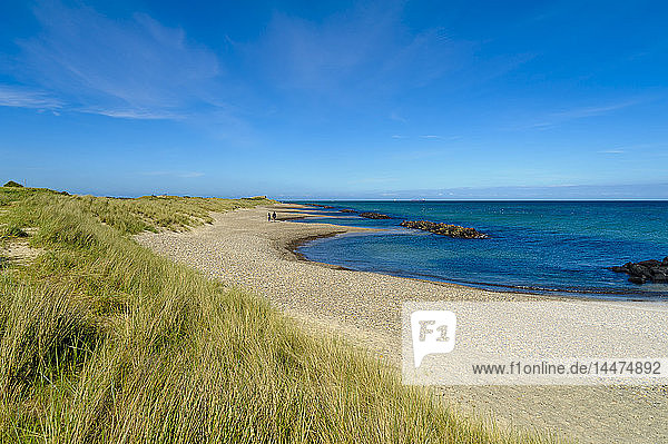 Dänemark  Jütland  Skagen  Grenen  Dünen  Strand und Meer