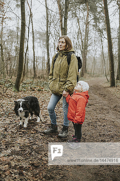 Deutschland  Mannheim  Mutter und Tochter mit Border Collie im Wald
