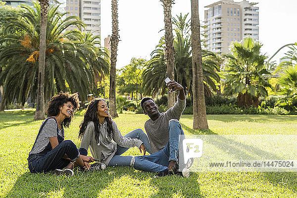 Freunde sitzen auf Rasen  haben Spaß  benutzen Smartphone