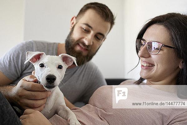 Ehepaar hat Spaß mit seinem Hund zu Hause