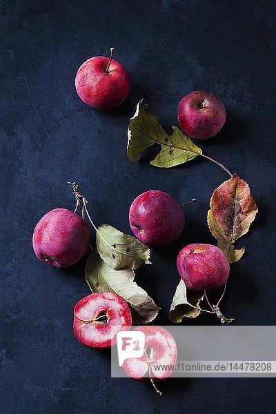 Geschnittene und ganze rotfleischige Äpfel auf dunklem Grund