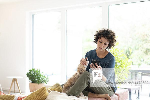 Frau mit Hund telefoniert zu Hause mit dem Handy