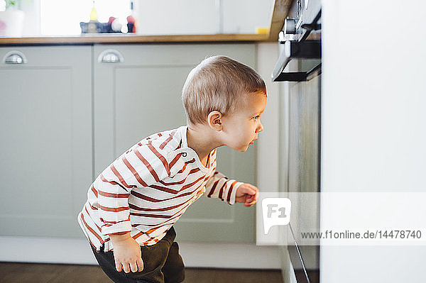 Toddler boy looking at oven in kitchen at home