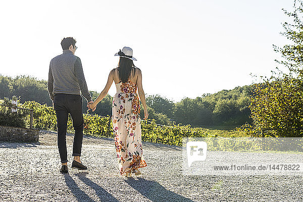 Italien  Toskana  Siena  junges Paar geht Hand in Hand in einem Weinberg