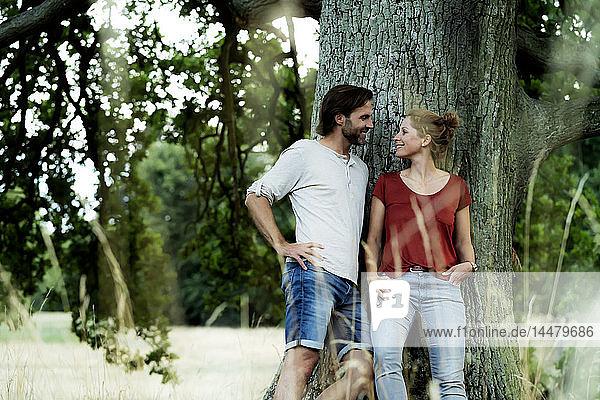 Glückliches Paar  das sich an einen Baum lehnt und einander anlächelt