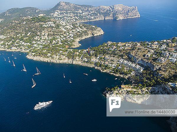 Spain  Baleares  Mallorca  Aerial view of Port d'Andratx  cliff coast