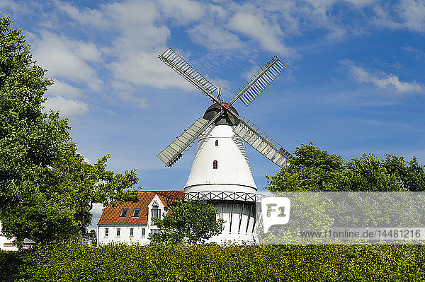 Dänemark  Jütland  Sonderborg  Windmühle
