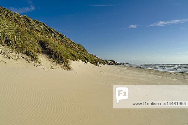 Dänemark  Jütland  Lokken  Düne und Strand