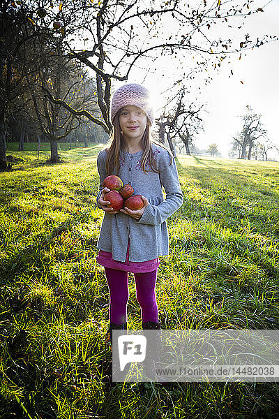 Portrait of smiling girl standing on a meadow with collected apples in autumn