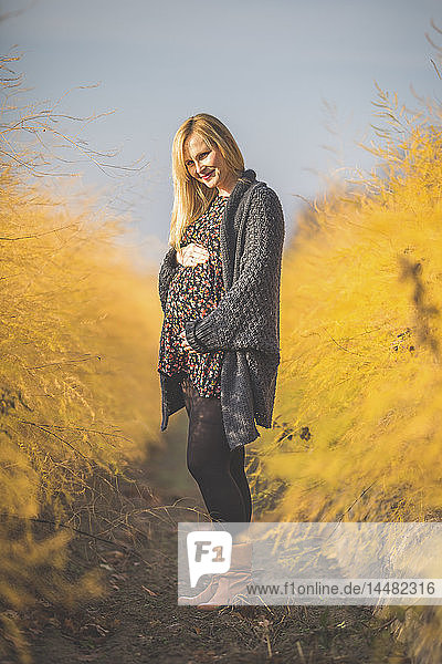 Smiling pregnant woman standing in asparagus field in autumn