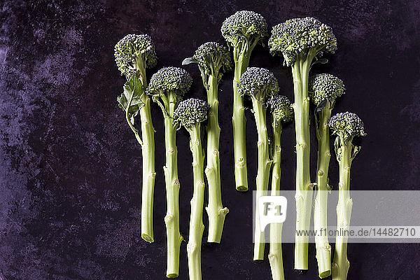 Keimender Brokkoli