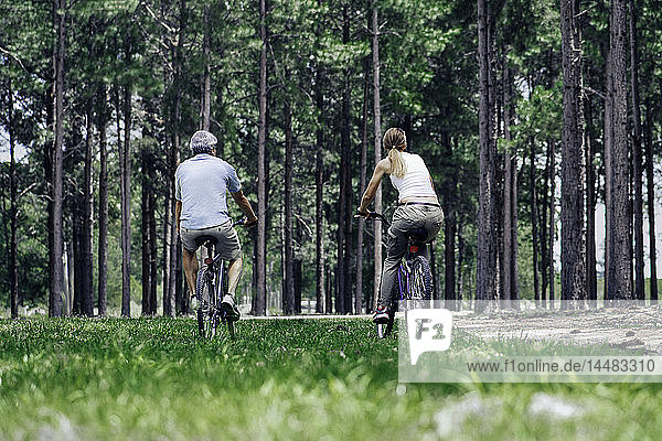 Mature couple cycling in forest