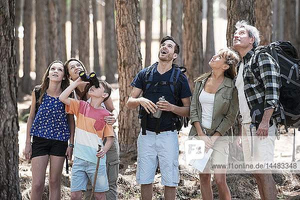 Family hiking together in pine forest