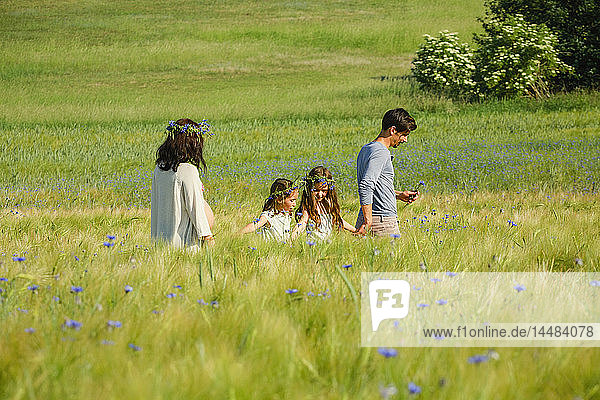 Family walking in sunny  idyllic rural green field with wildflowers