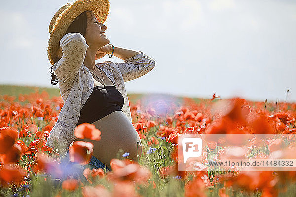 Carefree pregnant woman in sunny  idyllic rural red poppy field