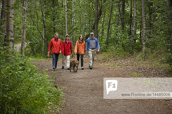 Family with kids and dogs walking on the trail to Thunderbird Falls  Eklutna  Southcentral Alaska  USA.
