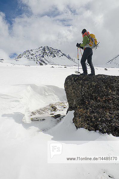 Woman hiker standing on a large rock outcrop enjoys the view in the Chugach Mountains near Powerline Pass and Glen Alps trailhead  Southcentral  Alaska
