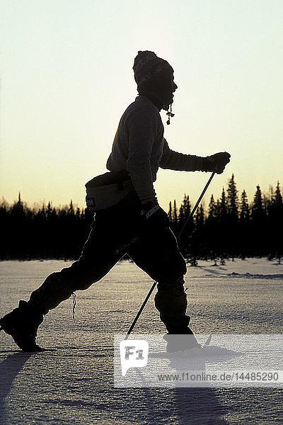 Silhouette of Cross Country Skier in Meadow AK Winter