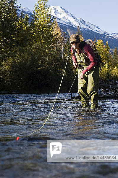 Woman casts for rainbow trout while fly fishing on Ptarmigan Creek on the Kenai Peninsula of Southcentral Alaska during Fall