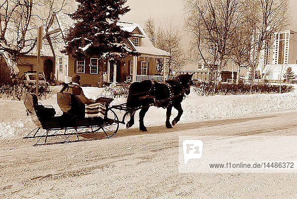 People on Sleigh Ride in Front of House Anchorage AK