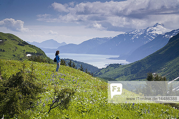 Woman hiking through a meadow on Lost Lake trail with a view of Kenai Mountains  Resurrection Bay and Seward  Alaska during Summer