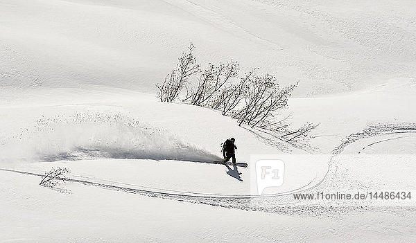 A backcountry snowboarder carving in Turnagain Pass  Southcentral  Alaska