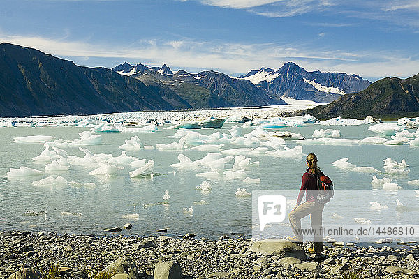 Female hiker pauses to view Bear Glacier from the shore of Bear Glacier Lake in Kenai Fjords National Park  Kenai Peninsula  Southcentral Alaska  Summer