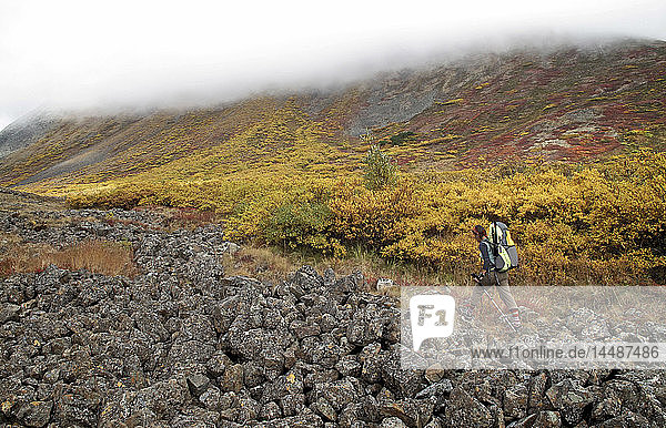 Female backpacker hiking to the 3 200 ft pass leading to the headwaters of Santucary River  Denali National Park  Interior Alaska  Autumn