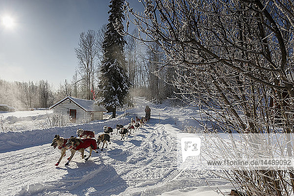 Paul Gebhart runs past the hot springs and steam rising as he leaves the checkpoint in Manley Hot Springs during the 2015 Iditarod