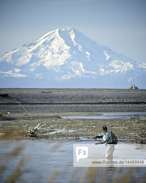 Woman fly fishing for wild Steelhead on Deep Creek with Mt. Redoubt in the background  Kenai Peninsula  Southcentral Alaska  Autumn