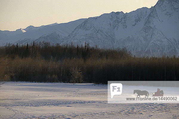 Couple in Horsedrawn Sleigh Chugach Mtns Mat-Su Valley SC AK Winter