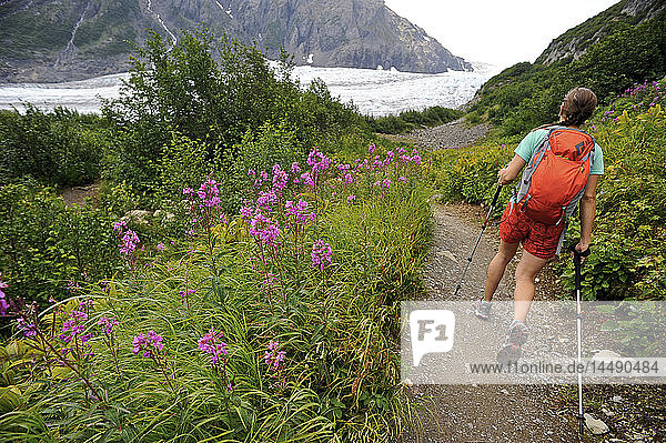 Woman hiking on the trail to Exit Glacier in the Harding Icefield  Kenai Fjords National Park  Kenai Peninsula  Southcentral Alaska  Summer