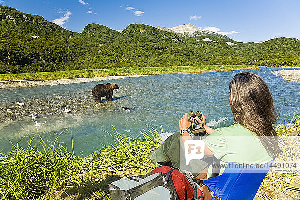 Female photographer photographs a Grizzly in Geographic Harbor in Katmai National Park  Alaska