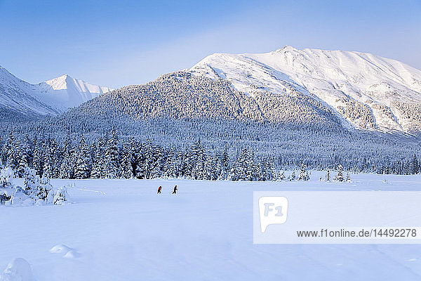 Couple cross-country skiing in a snowcovered meadow surrounded by Spruce trees and the Chugach Mountains near Girdwood in Southcentral Alaska