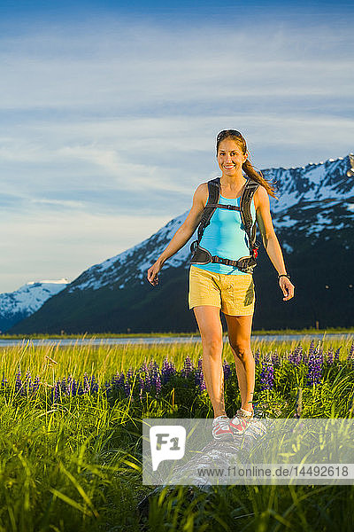 Woman hiking in lupine meadow near Twentymile River along Turnagain Arm in Southcentral Alaska during Summer