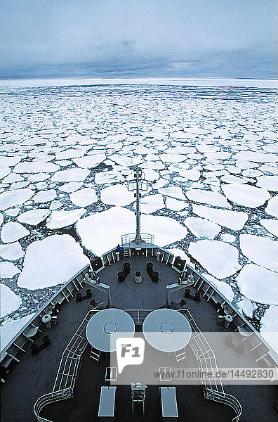 Ship on pack ice
