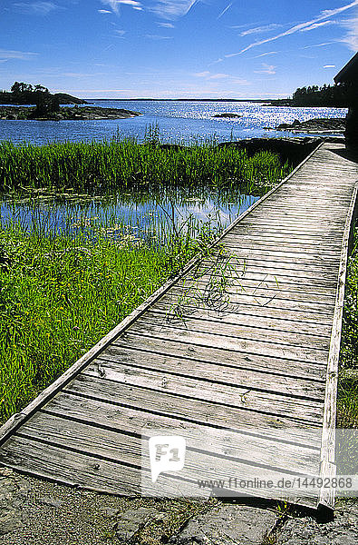 Wooden boardwalk near coast