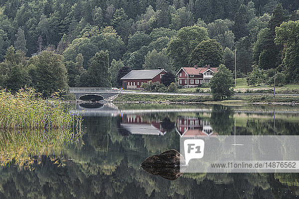 Houses by lake