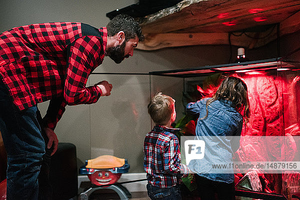 Vater und Kinder kümmern sich um Tierbecken