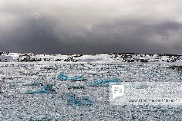 Pack ice  Murchinson Bay  Murchisonfjorden  Nordaustlandet  Svalbard  Norway