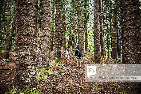 Wanderer auf dem Trail des schlafenden Riesen  Kauai  Hawaii