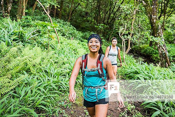 Wanderer auf dem Moanalua Valley Trail  Oahu  Hawaii