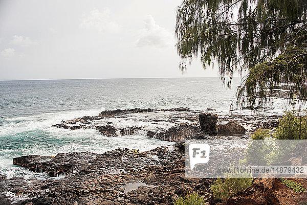 Felsenküste  Kauai  Hawaii
