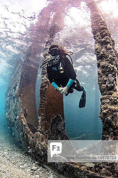 Underwater view of female scuba diver exploring Sapona wreck  Alice Town  Bimini  Bahamas