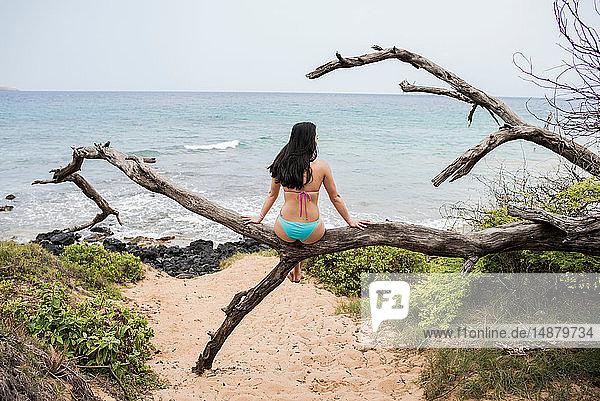 Frau sitzt auf einem Baumstamm am Strand  Makena Beach  Maui  Hawaii